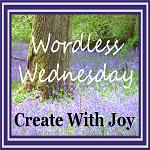 WW#2  Guest Blog By Tanvee